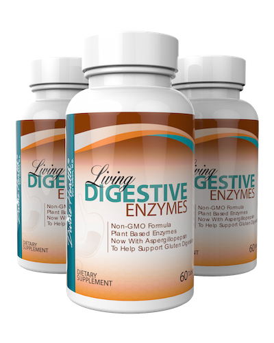 Living Digestive Enzyme (90 Day Supply)